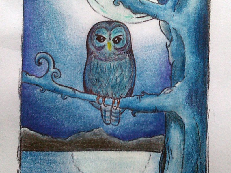 Blue night pencil sketch illustration